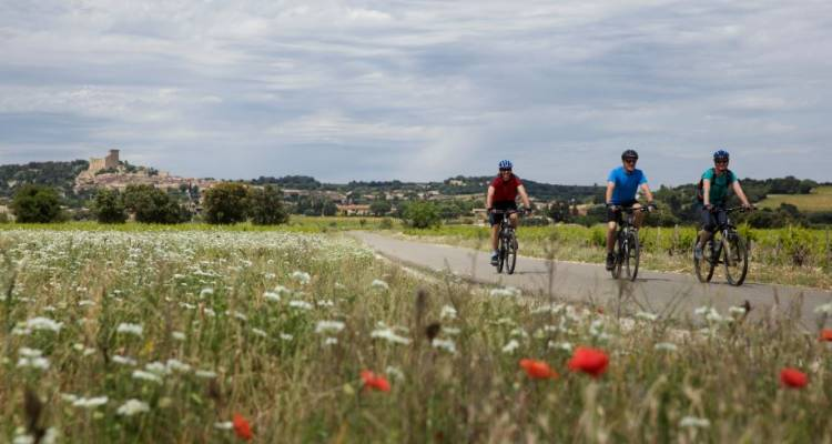 Cycle Provence - Intrepid Travel