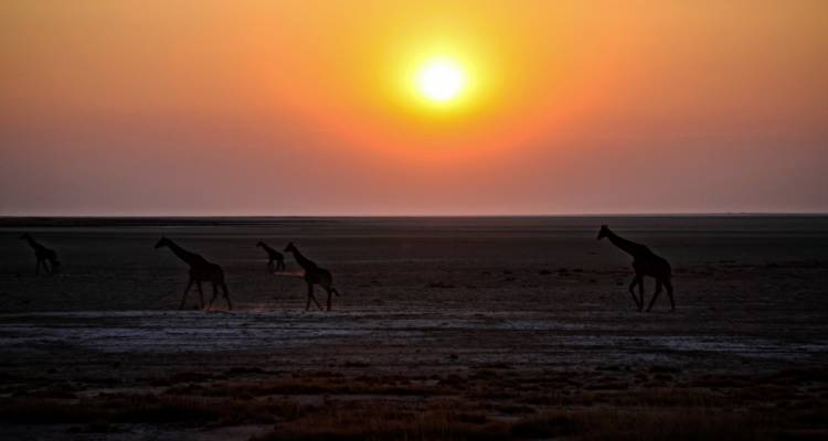Wonders of Namibia National Geographic Journeys - G Adventures
