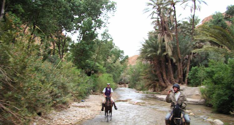 Horse Riding in Southern Morocco - Rug and Rock Adventures
