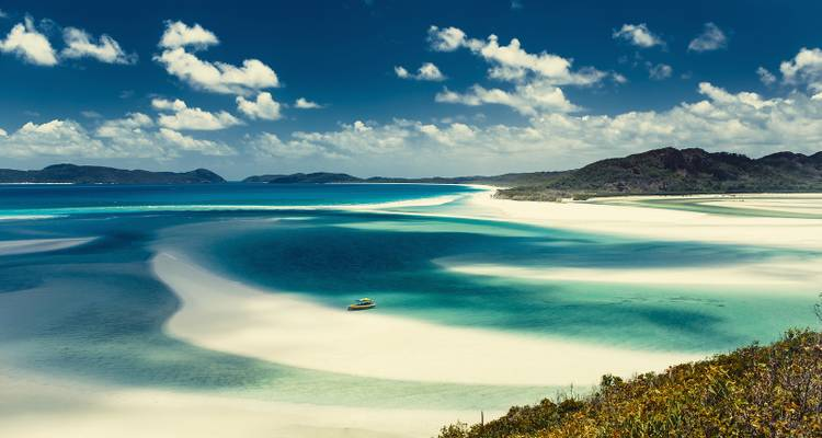 Sydney to Cairns Adventure Tour - Discovery Nomads