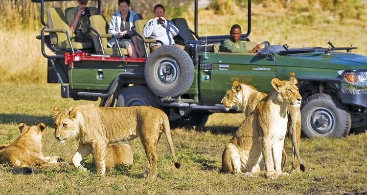 Southern Africa Discovery & East Africa by Air - Scenic Luxury Cruises & Tours