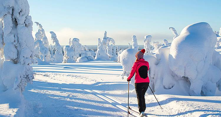 Cross-country skiing in Oulanka National Park - Exodus Travels