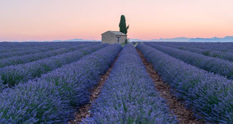Burgundy & Provence for Wine Lovers - Cruise Only 2018 - Avalon Waterways