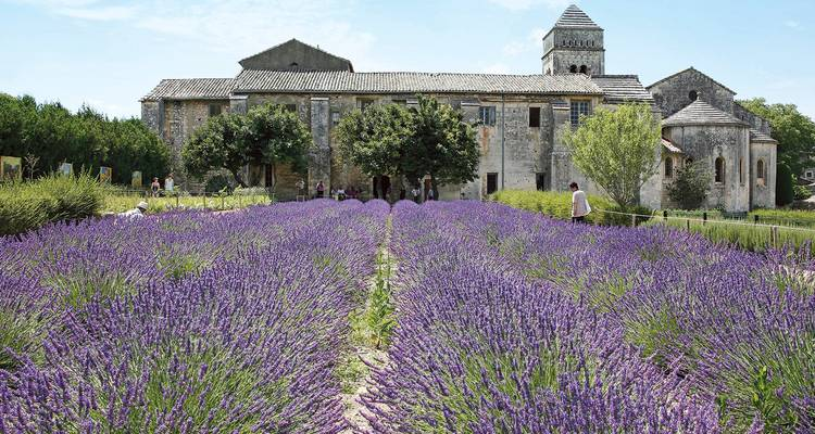 Gems of the Seine & South of France 2018 - Scenic Luxury Cruises & Tours