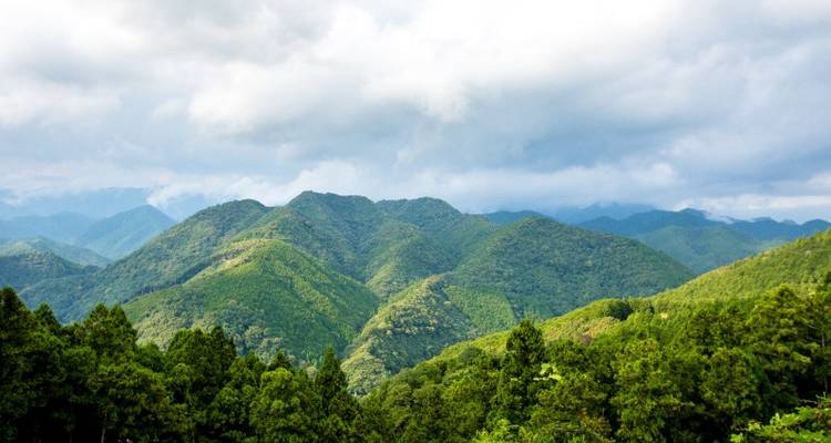 Kumano Kodo Trail Self-Guided Trek 4D/3N - Bamba Experience