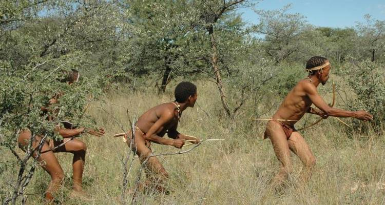 3 Day Bushman & Batswana Tribes - Wild Dog Safaris