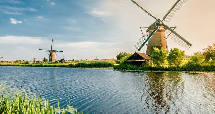 Holland and its tulips - CroisiEurope River Cruises