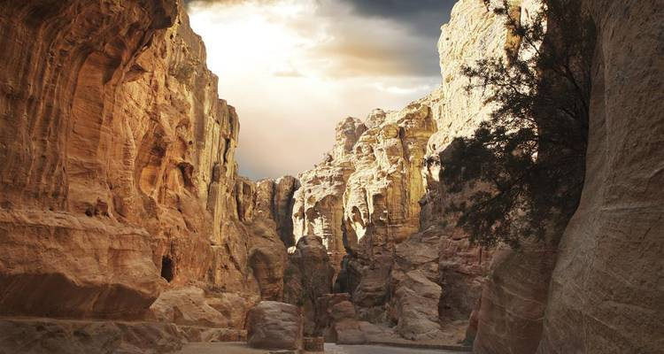 Petra, Wadi Rum, and Shobak 3 days - Booking Tours