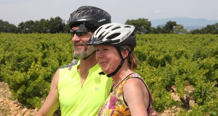 Bike Tour, Provence, France (guided groups) - The Chain Gang Cycle Tours