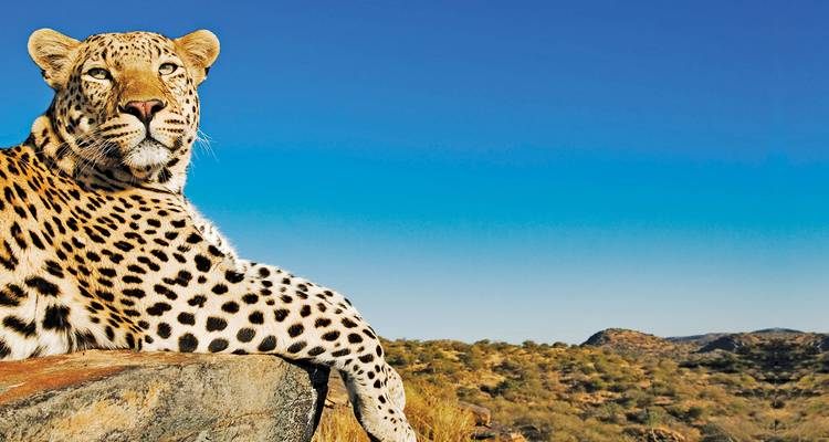 Ultimate Africa - Evergreen Tours