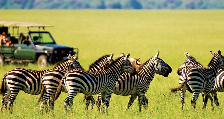 South Africa Explorer - Evergreen Tours