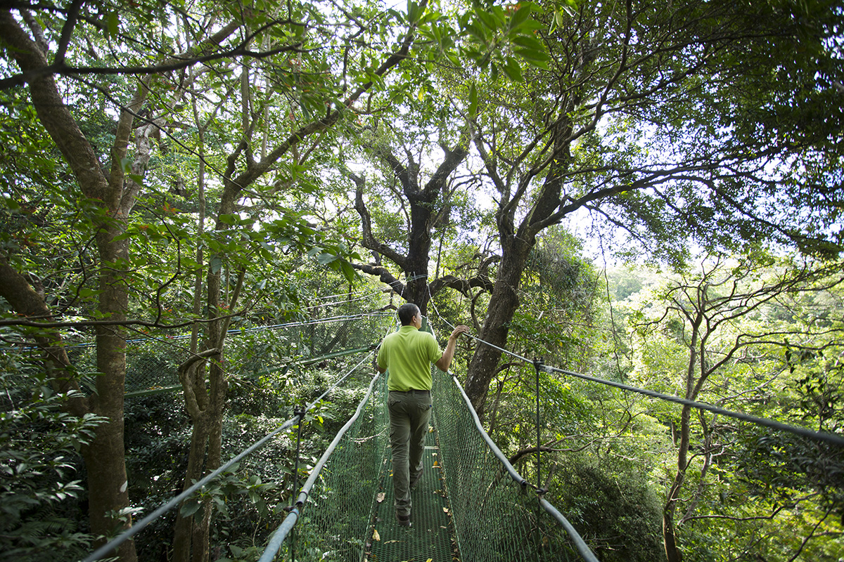 Wildlife Expedition in Costa Rica