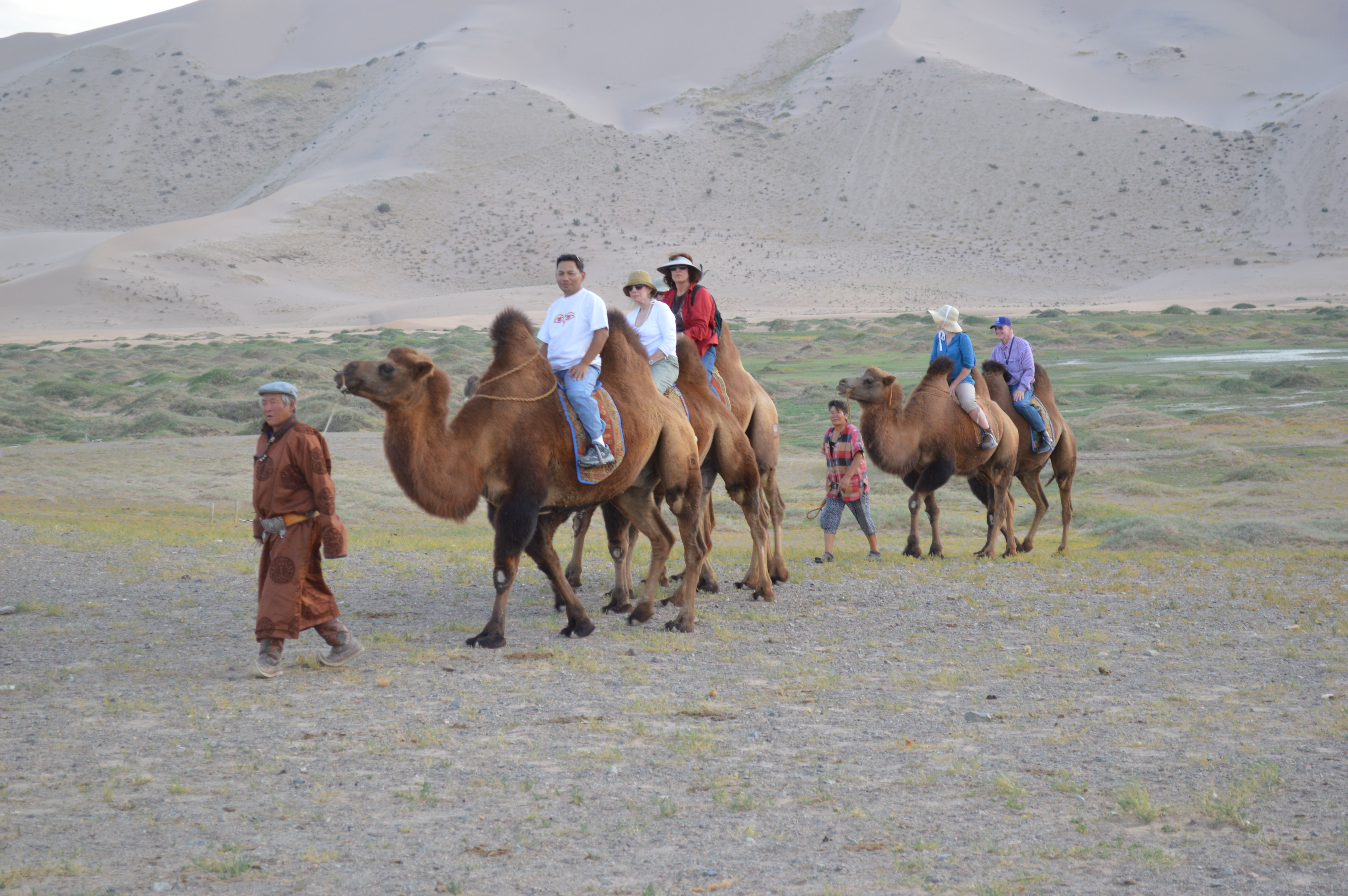 South Gobi and Central Mongolia