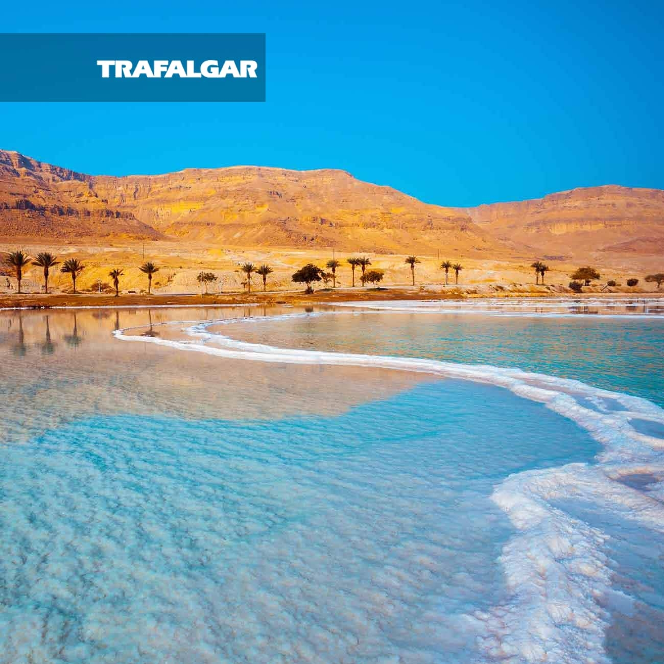 affordable price best deals on various styles Jordan Experience with Dead Sea Extension (7 Days)