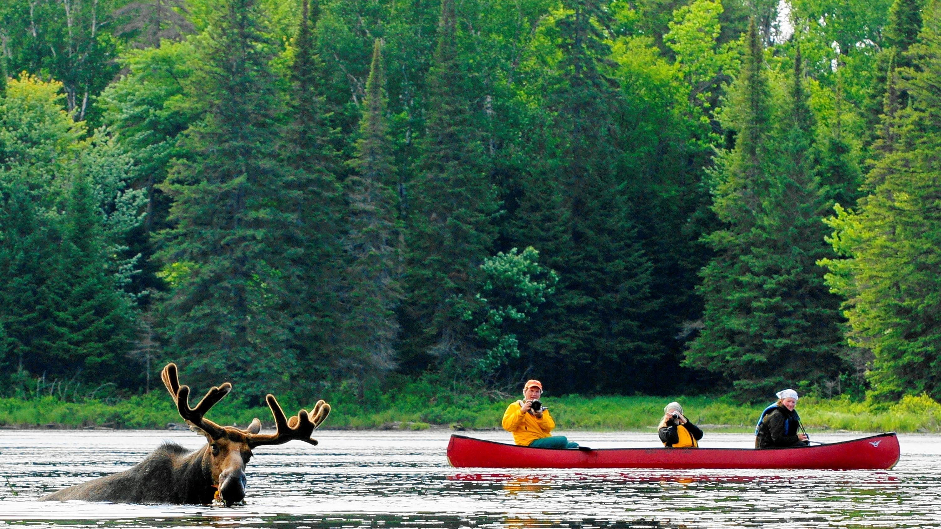 Algonquin Park Canoe Routes Map Pdf
