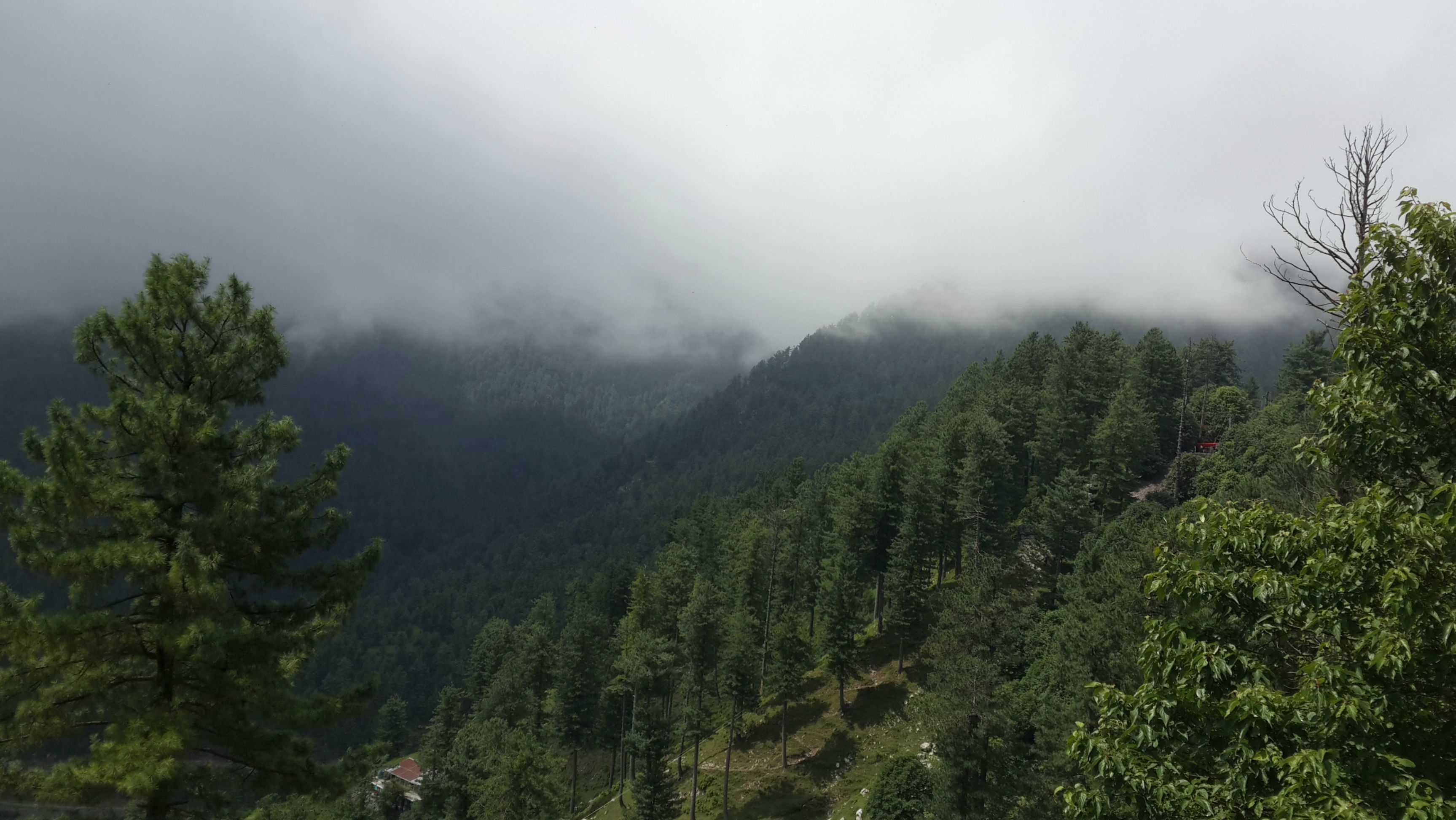 3 Days Trip To Murree and Nathiagali