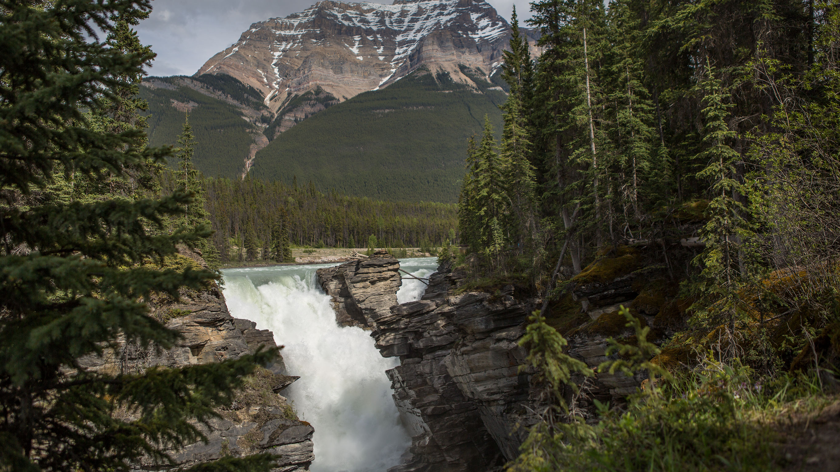 National Parks Of The Canadian Rockies Eastbound By G Adventures With 1 Tour Review Code Ncur