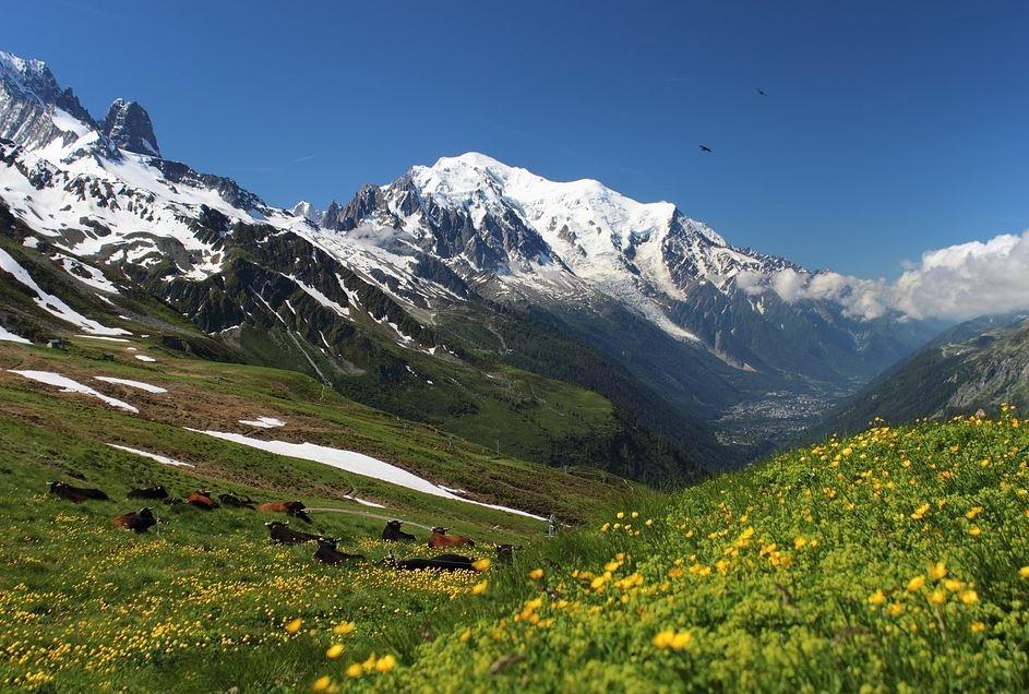 2aa24a2fc Mont Blanc Rambler