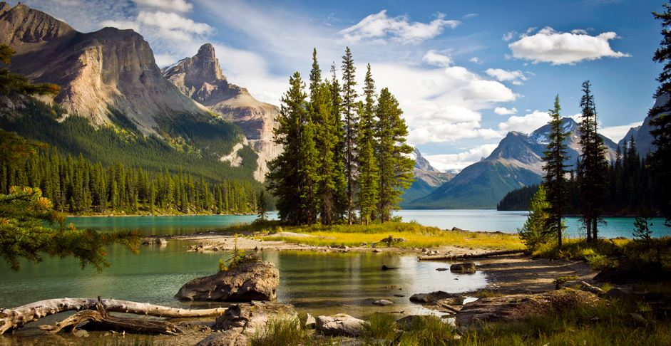 Spirit Of The Rockies By Globus With 2 Tour Reviews Code
