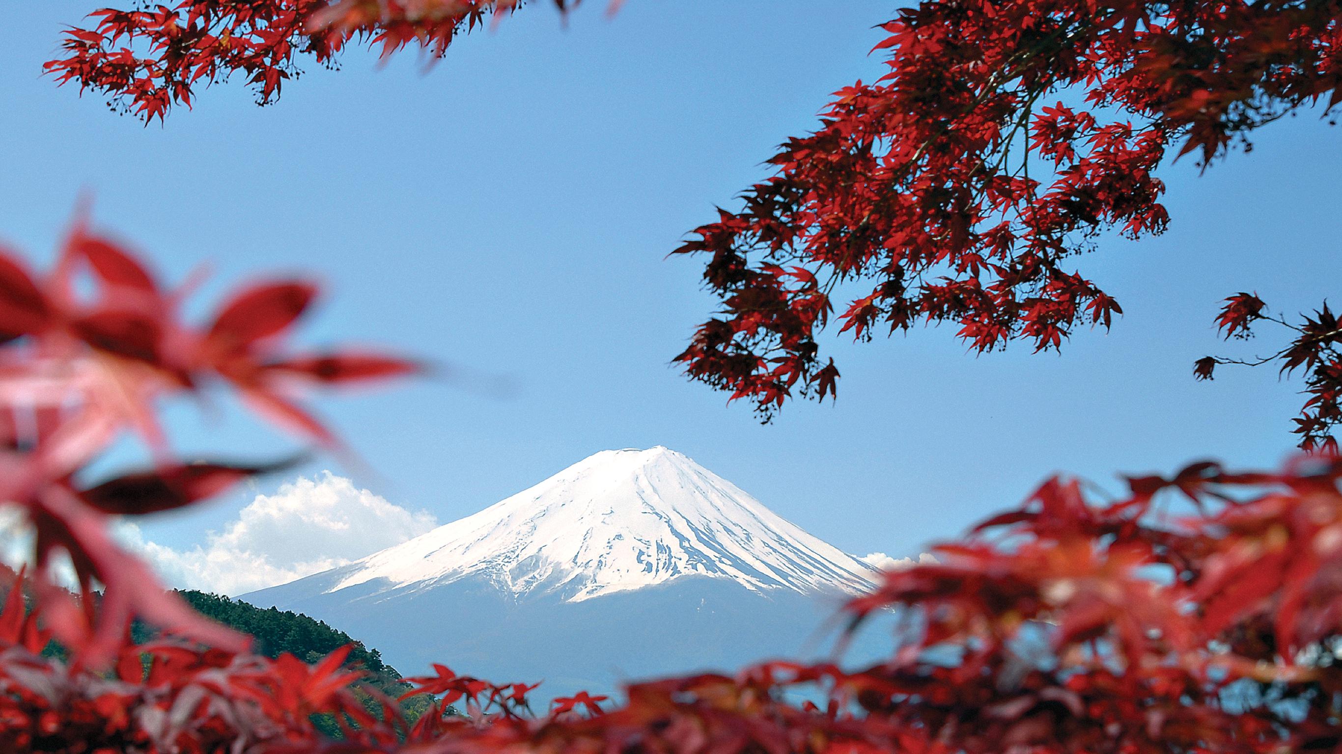 Best Japan Tours Trips TourRadar - Japan tours