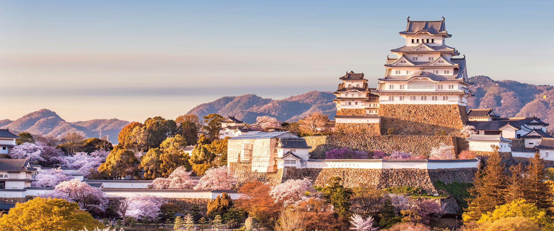 japan highlights 2018 2019 by scenic luxury cruises tours code